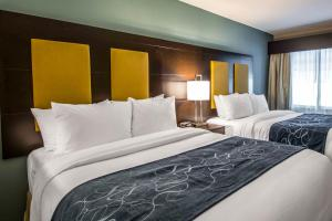 Queen Suite with two Queen Beds and Shower