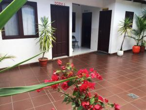 Jodanga Backpackers Hostel, Hostels  Santa Cruz de la Sierra - big - 33