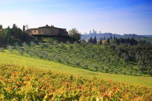 Agriturismo Montegonfoli - AbcAlberghi.com