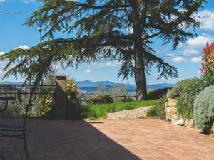 B&B La Collina Toscana, Farmy  Pieve a Maiano - big - 23