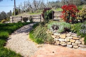 B&B La Collina Toscana, Farmy  Pieve a Maiano - big - 12