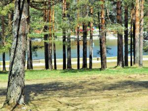 Apartman Zlatiborsko jezero, Apartmanok  Zlatibor - big - 12