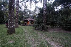 Casa de Cambury, Homestays  Camburi - big - 6