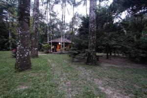 Casa de Cambury, Privatzimmer  Camburi - big - 6