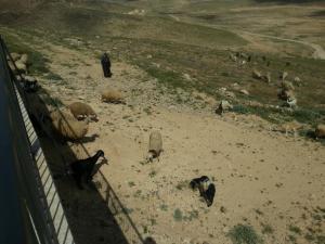 Desert Call, Bed and breakfasts  Arad - big - 56