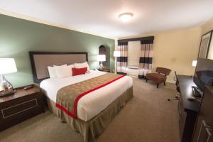 Ramada by Wyndham Houston Intercontinental Airport East, Hotel  Humble - big - 3