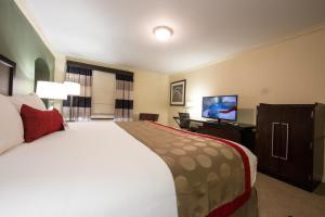 Ramada by Wyndham Houston Intercontinental Airport East, Hotel  Humble - big - 4