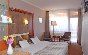 Silvanus Hotel, Hotels  Visegrád - big - 15