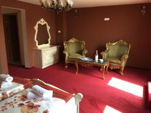 Hotel Le Baron, Hotel  Timisoara - big - 21