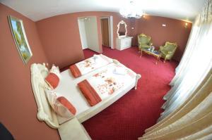 Hotel Le Baron, Hotel  Timisoara - big - 1