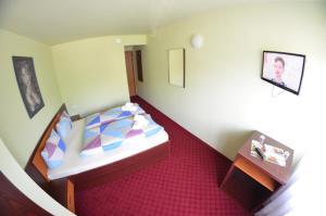 Hotel Le Baron, Hotel  Timisoara - big - 12