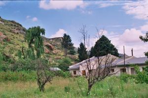 ASPEN GUEST HOUSE