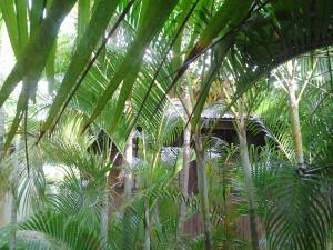 Ocean Garden Langkawi, Case vacanze  Kuah - big - 35