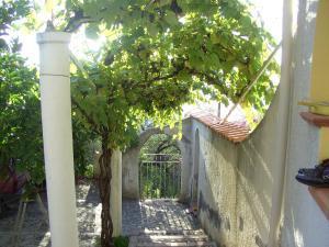 Casa Mastrissa, Ferienwohnungen  Taormina - big - 5
