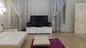 Center City Flats - Hermitage, Apartmány  Petrohrad - big - 6
