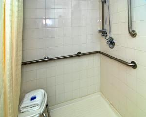 King Room with Roll-in Shower - Mobility Accessible/Non-Smoking