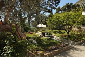 Casa Augusto B&B, Bed and Breakfasts  Capri - big - 22