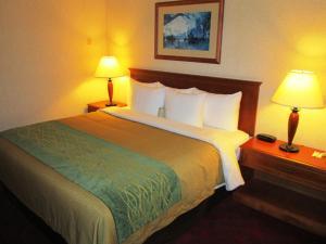 Comfort Inn & Suites Victoria, Hotels  Victoria - big - 5