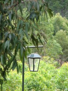 Ravensbourne Forest Chalets, Chaty  Ravensbourne - big - 8