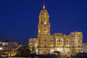 Petit Palace Plaza Malaga (25 of 38)