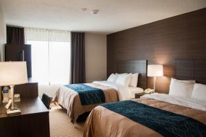Deluxe Room with Two Queen Beds - Upper Floor