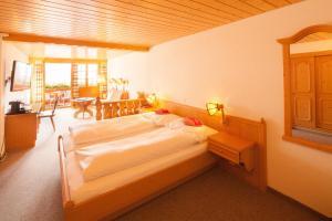 Alpenhof, Отели  Гриндельвальд - big - 30