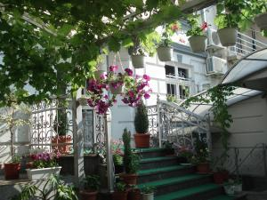Tokin House, Guest houses  Bitola - big - 38