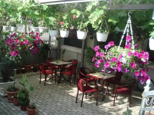 Tokin House, Guest houses  Bitola - big - 37
