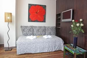 Casa Macondo Bed & Breakfast, B&B (nocľahy s raňajkami)  Cuenca - big - 19