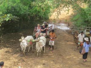 Rimaka Village, Inns  Habarana - big - 63