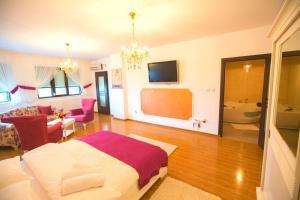 Noblesse Suite, Ferienwohnungen  Galaţi - big - 11