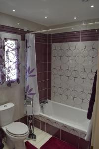 Maison d'hôtes Villa Soleil, Affittacamere  Bergerac - big - 7