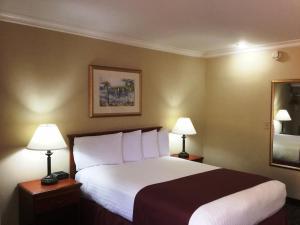 Deluxe Zimmer mit 1 Queensize-Bett - Nichtraucher