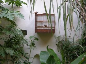 Dar Zahia, Guest houses  Taroudant - big - 49