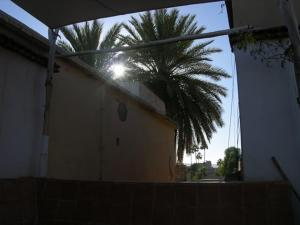 Dar Zahia, Guest houses  Taroudant - big - 22