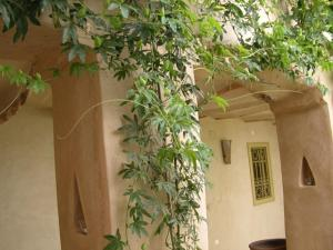 Dar Zahia, Guest houses  Taroudant - big - 53