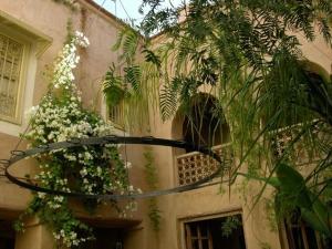 Dar Zahia, Guest houses  Taroudant - big - 57