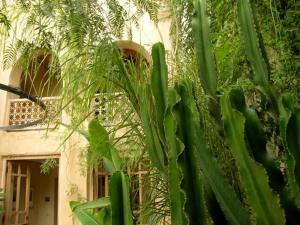 Dar Zahia, Guest houses  Taroudant - big - 56