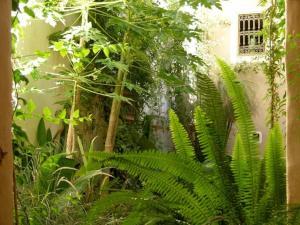 Dar Zahia, Guest houses  Taroudant - big - 54