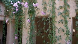 Dar Zahia, Guest houses  Taroudant - big - 43