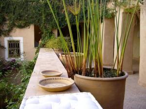 Dar Zahia, Guest houses  Taroudant - big - 58