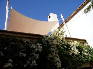Dar Zahia, Guest houses  Taroudant - big - 28