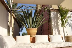Dar Zahia, Guest houses  Taroudant - big - 25