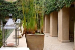 Dar Zahia, Guest houses  Taroudant - big - 59