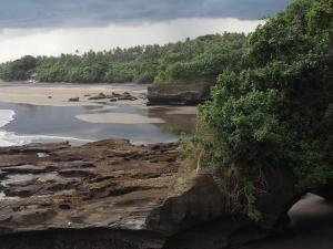 Gajah Mina Beach Resort (16 of 70)