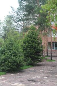 Hotel Edem, Hotels  Karagandy - big - 48