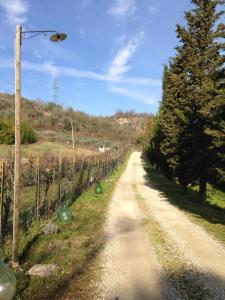 Fattoria Settemerli, Farmy  Florencia - big - 58
