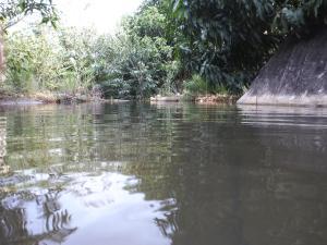 Pousada e Hostel Pedra do Elefante, Guest houses  Guarapari - big - 59