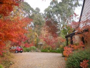 Merrimeet Cottages, Дома для отпуска  Брайт - big - 64