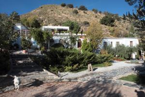 La Almunia del Valle (29 of 53)